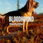 theHunter Call of the Wild Bloodhound Free Download